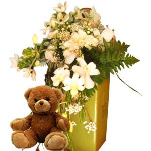 Trailing Vase Arrangement with Teddy Bear