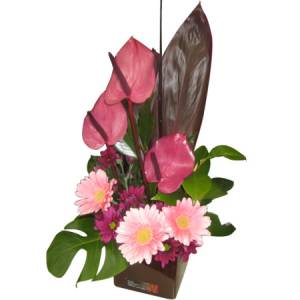 Modern  Boxed Arrangement in Pink tones.