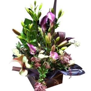 Premium Large Boxed Arrangement