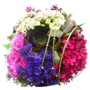 Bright Linear Overlay posy