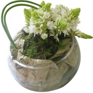 Modern White Fish Bowl Flower Arrangements